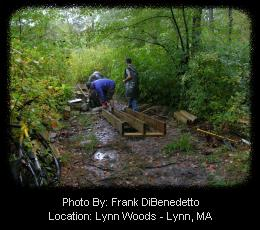 Fixing Wet Trail Sections - Lynn Woods Trail Network